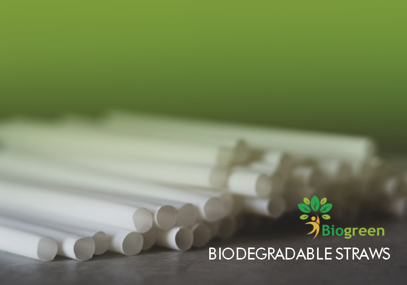 Say No to Plastic – Use biodegradable Straws