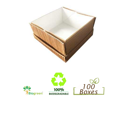 Bio Food Containers 1100ml